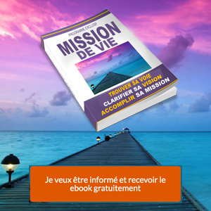 Mission de vie - ebook - 300x300