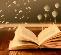 Lire, c'est du bonheur …
